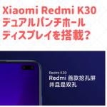 Xiaomi Redmi K30 デュアルパンチホールディスプレイ搭載?